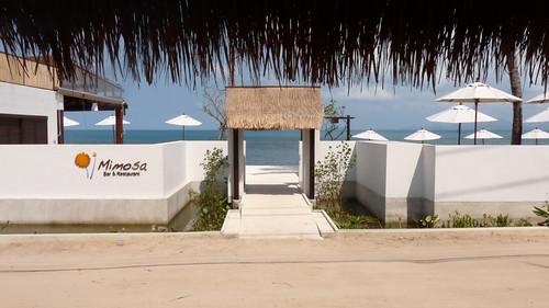 Koh Samui Mimosa Resort-Pool & Restaurant コサムイ ミモザリゾート