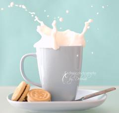 cookie splash (dhmig) Tags: blue white milk nikon cookie experiment naturallight indoor splash softcolours platinumheartaward cookiesplash