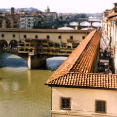 Florence, Ponte Vecchio (tvordj) Tags: italy orange grandmother bridges roofs squarecrop thumbwrestling riverscape onfilm gamewinner friendlychallenges challengefactorywinner thechallengefactory yourock1st topmedalwinner storybookwinner storybookttwwinner agcgsweepchallengewinner