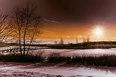 A snow scene (daryl.larkin) Tags: yellowish nikon d5000 winter water trees sunset sky nature michigan marsh ice frozen clouds closetonature absolutemichigan crooswinds