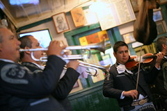 mariachi (Farl) Tags: music mexico musical violin bajacalifornia ensenada mariachi tradition ensemble hussong cantinahussong