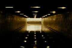 Medway Invasion (nathanswan) Tags: shadow sunlight black reflection water monochrome rain weather sepia contrast underpass subway gold lights kent flooding flood unitedkingdom britain geometry symmetry tiles rainfall montone maidstone naturaldisaster rivermedway medwayriver
