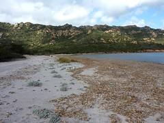 La plage Ouest de Porto Novo