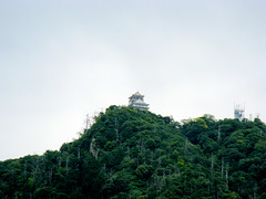 1101 The Castle on the Mountain (mari-ten) Tags: mountain building nature japan architecture cycling zoom  2008 gifu  gifucastle tokai eastasia japanesecastle    japanesearchitecture gifucity 200810  20081012 mountkinka