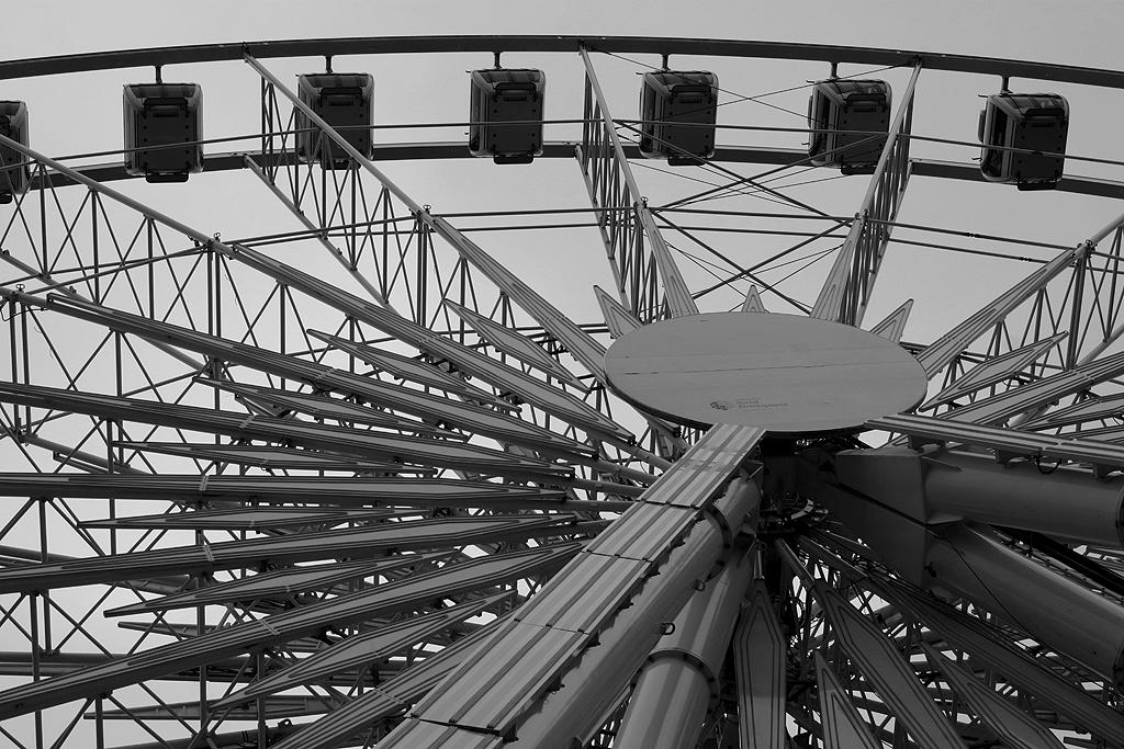 The Belfast Wheel