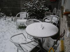 Snowy January..