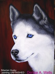 Siberian Husky painting by Denise A. Wells (Denise A. Wells) Tags: detail art artwork husky artist unique malamute siberianhusky friendly unfinished strong siberian beautifuleyes brighteyes acrylicpainting gentle noble alaskan incomplete frustrating eyecatching reliable agile adventurous dogportrait artistblock stunningeyes strikingeyes arctichusky deniseawells beautifuleyecolor intelligenthusky wonderfulcompanions kindtemperament siberianarctic artisticlyblocked inprogressfor3years wolflikehowls reallycooldog goodfamilycompanion arcticsiberianhusky arcticsnowdogs arcticnortherndogs alaskanmalamutesiberianhusky realisticeyedrawings denyceangel40yahoocom realisticeyepaintings