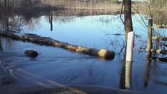 Local Flooding (Pak T) Tags: water video flooding flip highdefinition hd mino 720p minohd