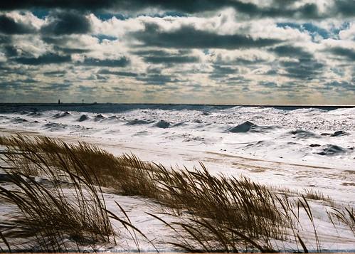 Meinert Park Beach