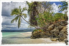 HDR - Dominican Republic III.@.1150x733 (Pawel Tomaszewicz) Tags: blue sea wallpaper sky plants cloud holiday tree beach colors beautiful coral clouds photoshop canon island bay photo haiti sand europe dominican republic angle image photos coconut dr wide dream picture wideangle ps images x dreams 1200 caribbean bacardi reef 800 hdr hdri iphone pawel wakacje samana ipad hispanola kokos morze chmury niebo 3xp photomatix greatphotographers wyspa orzechy karaiby 1200x800 dominikana todaysbest carrabien kokosowe hdraddicted hdraward kokosy hdrdreams tomaszewicz paweltomaszewicz onlythebestofnature drbacardi