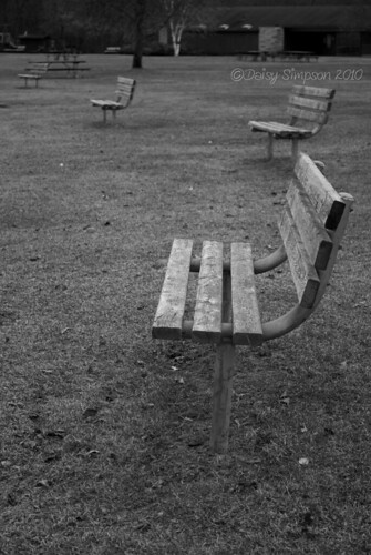 park benches b&w
