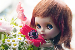 kimberly loves flowers