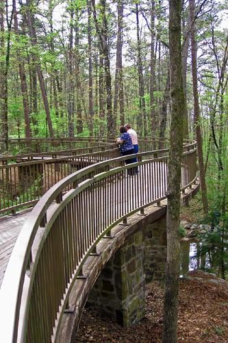Garvin Woodland Gardens 7