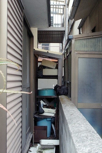 Today's Cat@2010-04-04