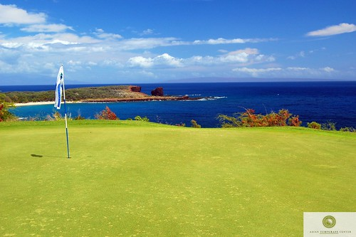 seashore_paspalum_green_hawaii