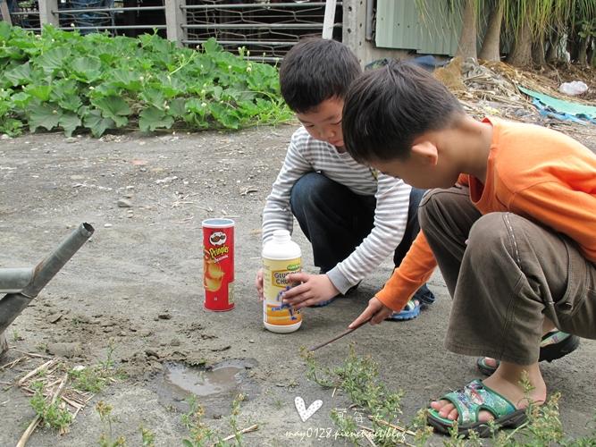 灌蟋蟀27-2010.04.05