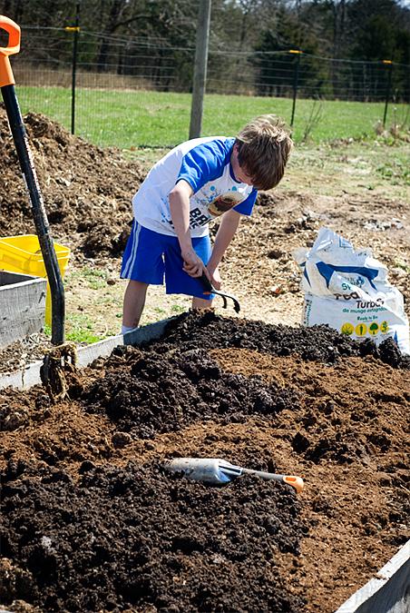 amending garden soil 4