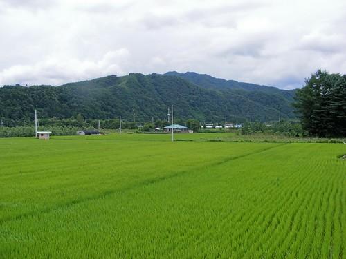 2008_0817Korea20058