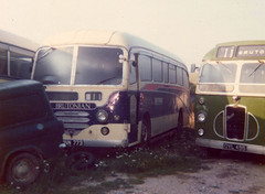 Knubley(Brutonian)-YNN773-BrutonDepot-1976 (Michael Wadman) Tags: bristol lincolnshire bruton aecreliance sc4lk brutonian ovl495 ynn773