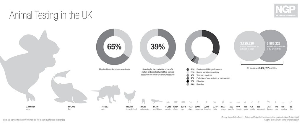 Animal Testing in the UK from GDS Digital
