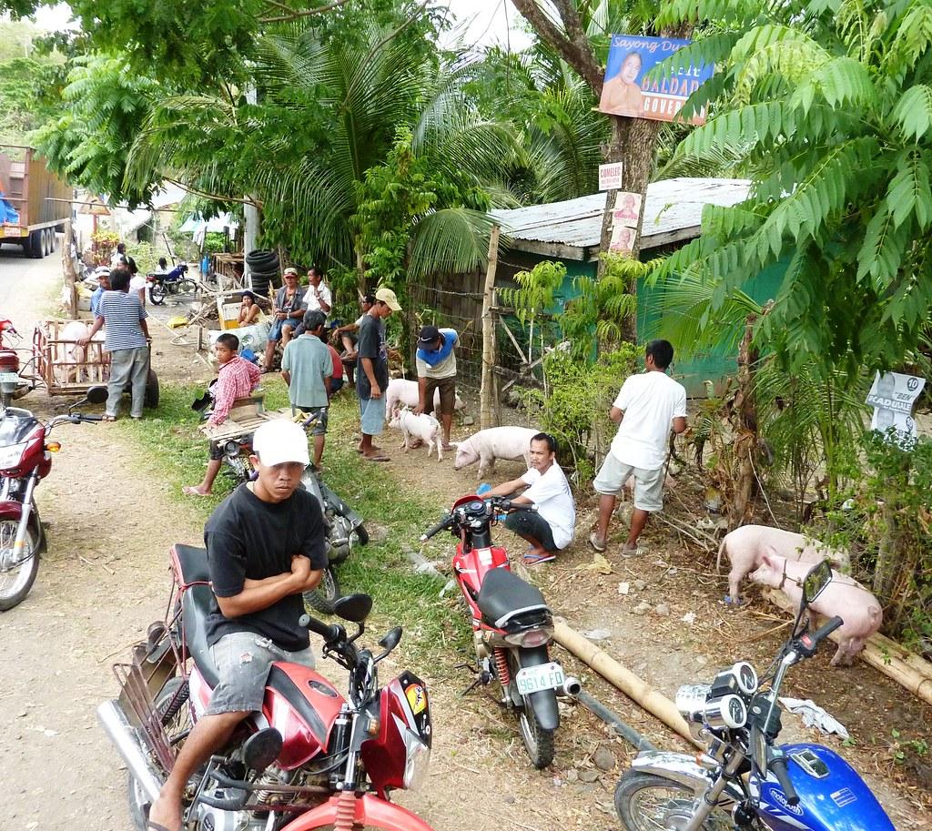 Negros-Dumaguete-Mabinay-Bacolod (140)
