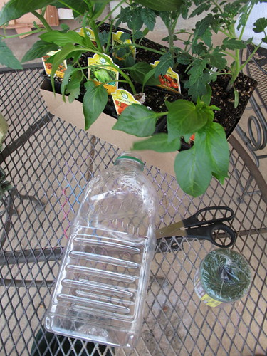 Upside down tomato planter supplies