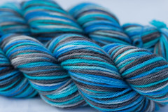 Prolific Seas on Peruvian Higlands Wool- 3.5 oz (...a time to dye)
