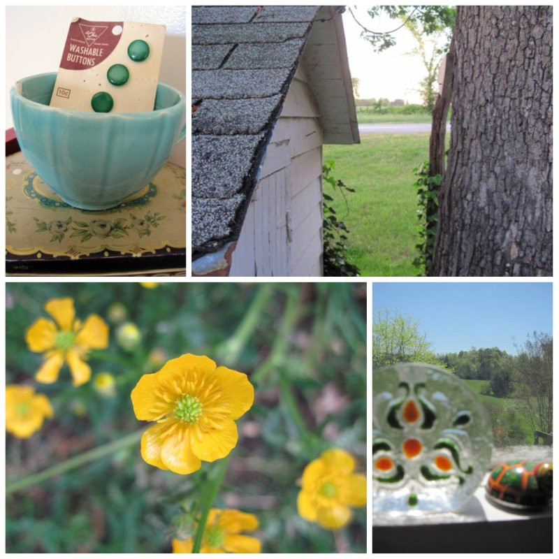 Little farm Spring collage