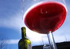 Al vino argentino, salud (parte I)
