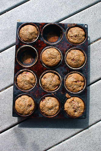muffins in the sunlight