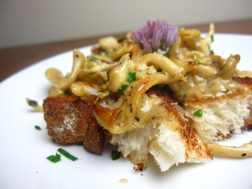 Yellow oyster mushrooms in vermouth cream sauce
