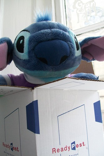 Hello Stitch!