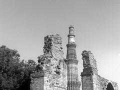 Standing among the ruins
