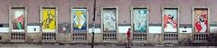 Intervencin  Colectivo Cefalpodo (Mandujanox) Tags: andrea mary veracruz xalapa laso arjona xalapaeosilustres colectivocefalpodo cerezanucamendi
