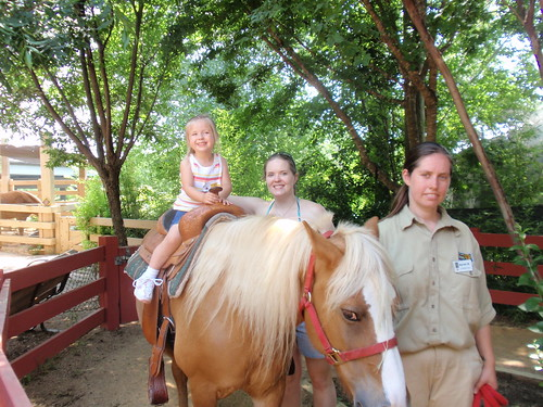 Pony Ride Picture