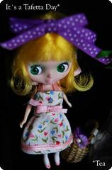 *petit nightflower