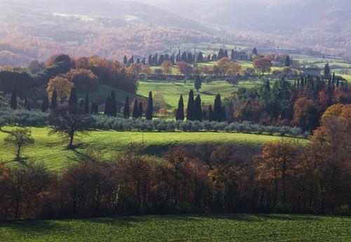 Campagna fra Chianciano e Montepulciano by luccabellincioni