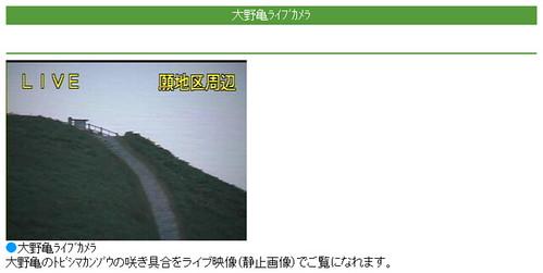 大野亀ライブカメラ -SOINON-
