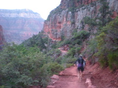 Barry in a Blurr, North Kaibab Trail