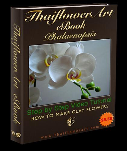 Phalaenopsis-eBook