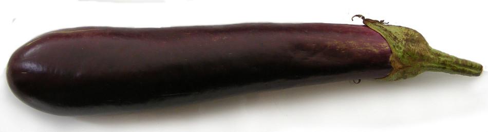Chinese Aubergine
