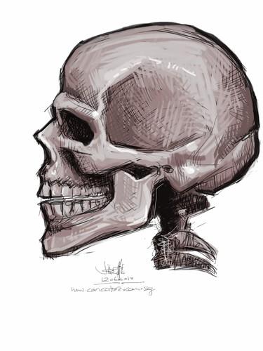 skull study with iPad - 3