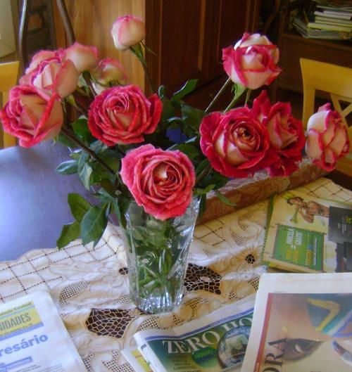 Recepção florida