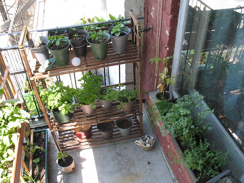 Five Ways to Beautiful and Productive Balcony Gardens Permacultured