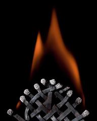 burning bush (thefallingtree) Tags: delete10 delete9 delete5 fire delete2 delete6 delete7 smoke delete8 delete3 delete delete4 save save2 flame burn ash match matches weave braid deletedbydeletemeuncensored altimg6392