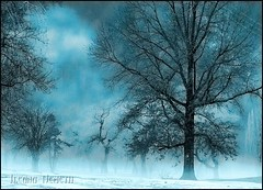 Happy Halloween! (*Arianwen*) Tags: winter mist tree halloween fog landscape creepy spooky hdr arianwen mywinners agorathefineartgallery