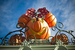 Disneyland – Pumpkin Minnie (Fearless.Photog) Tags: california castle ariel halloween goofy fireworks disneyland disney mickey donald parade mickeymouse daisy belle pluto cinderella anaheim snowwhite sleepingbeauty toontown spacemountain electricalparade