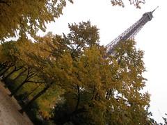 Eiffel Tower, Champ de Mars, Paris, France - photo by aniket (6) (Aniket Mone) Tags: paris france tower seine museum louvre eiffel moulinrouge tourmontparnasse seineriver gustaveeiffel greenengineering hotelibiscambronne panaromamontparnasse56