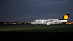 D-AVRP (Tyno from Holland) Tags: airport british schiphol aerospace 146 eham davrp lufthanse