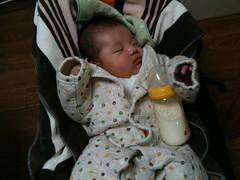 とらちゃんにミルクを飲ます